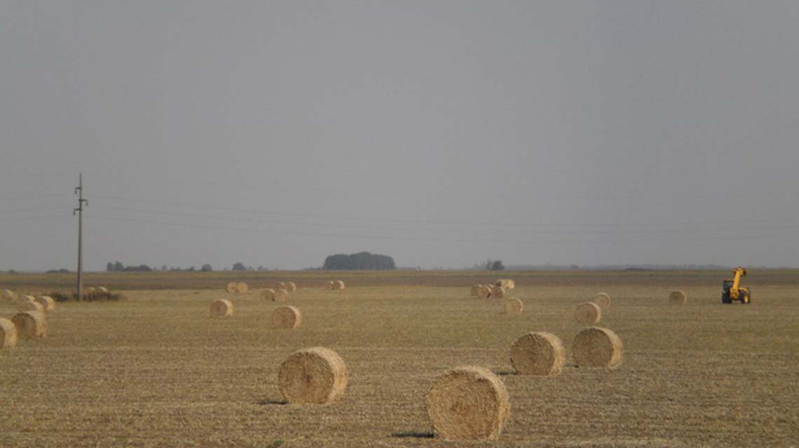 Jesen u Vojvodini