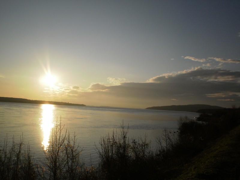 Morning in the Negotin region